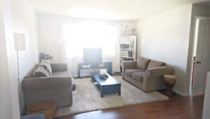 6 month furnished main floor in Dover, utilities included