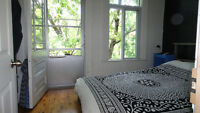 Dreamy Plateau Sublet for March (flexible 4-6 weeks)