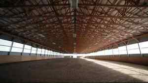 Sunday Winter Schooling at Sky Haven Equestrian Centre Kawartha Lakes Peterborough Area image 5
