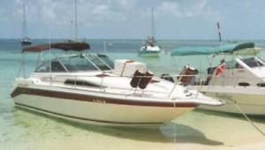 Bahamas. Yacht de 30 pieds.  Partenariat   5000$