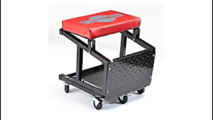 MotoMaster 2-in-1 Step Stool