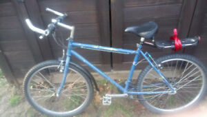 24 Speed Bicycle