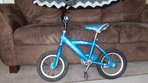 Great Starter Bike for Boys