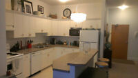 Fully Furnished Downtown Scarth Street Summer Rental