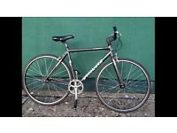 Specialized Langster 52cm single speed bike bicycle