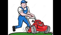 Lawn care/bulk garbage removed/ yard clean up / FREE QUOTES