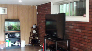 2+1 bedroom basement only in Whitby available for $1195;Utility+