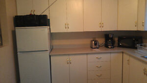 fully furnished and equipped one bedroom above ground apartment St. John's Newfoundland image 7