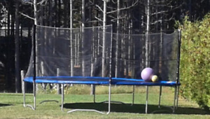 Trampoline 16' round Brand New with Safety encl. by Super Jumper