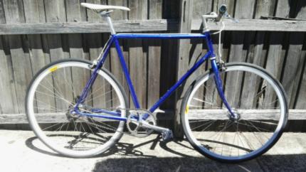 Single speed fixie bike vintage frame