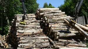 $125 8 FT LOGS OR DRY SPLIT $255 FIREWOOD  403-2761