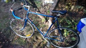 1985 Norco Monterey - (X)XL Frame