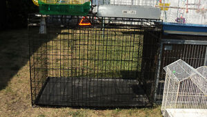 PET CAGES FOR SELL starting from $20