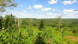 Cabot Trail Land For Sale
