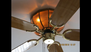 Three speed ceiling fan/light