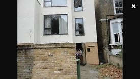 Lovely 4/5 bedroom house in Clapton