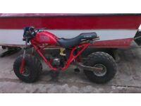 Honda big red trike 250cc converted to two wheeler