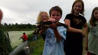 MCFT Forest Ranger Summer Camps