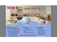 Domestic & office cleaning, Ironing and Carpet cleaning
