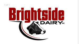 Dairy herds assistant