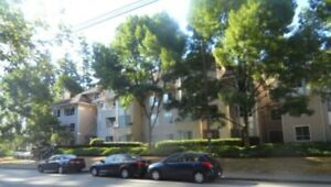 Large 2 bedrooms& 2 bathroom condo near Conquitlam Center