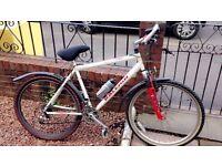 ***Mens/Boys Rayleigh 26 inch Bike***
