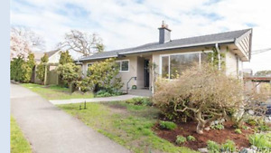 Clean, Bright and Central - Newly Renovated 3BR House-Fairfield