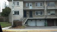 Fully Renovated Lower Duplex and Basement for Rent in C.S.L