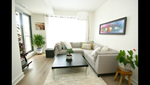 Beautiful Lebreton Flats condo for rent!