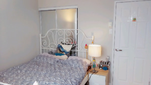 4min walk to concordia - a room in 4 1/2,rent for march