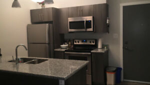 Sublet, new apartment only 3 months of use,Free Month of January