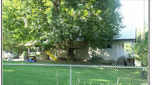 completely renoed 2 bed 2 bath Entry level Salmon Arm