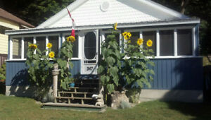 A week in PORT STANLEY COTTAGE this summer!!!!