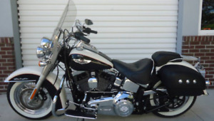 2011 Harley Davidson Softail Deluxe - Mint - Low KM