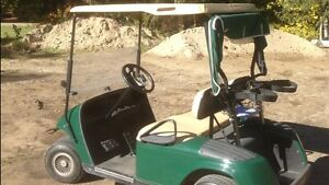 Ezeego 4stroke golf cart