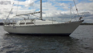 Looking for a sailboat to love