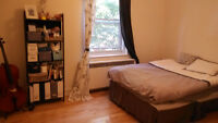 Large 4 1/2 apartment for rent from 1 November (heating inclus)