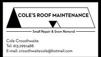 Cole's Roof Maintenance - roofing repairs