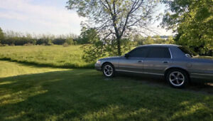 crown vic for sale