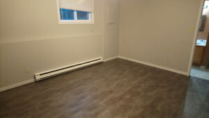 1 bedroom basement apartment Cowan Heights available September 1