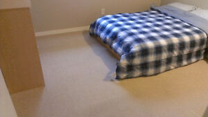 Double mattress with box spring & bedding