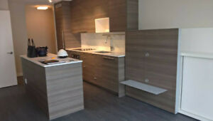 1BR plus Den Brand New Furnished Condo in Surrey Central