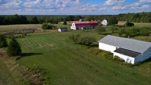 Blueberry Farm with log cabins for sale
