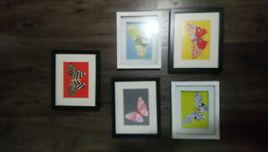 5 framed wall pictures