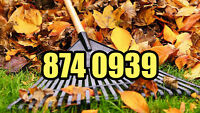 Put Down Your Rake, Let Me Rake Your Leaves 874 0939