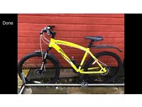 Iron horse mountain bike