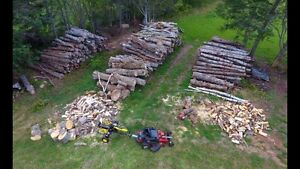 Firewood in 8 & 12' lengths.  Split wood also available.