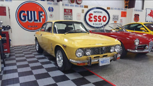 Looking for Alfa Romeo GT or GTV