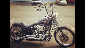 2006 Harley FXSTS