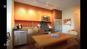 Furnished 1 Bedroom Apartment in Mount Pleasant